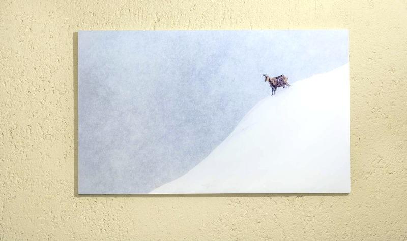 foto en cartón pluma kapa: FINE ART FOTO