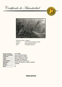Certificado de Autenticidad Hahnemühle:FINE ART FOTO